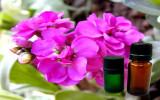 violet_oil_2