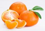tangerine20tango